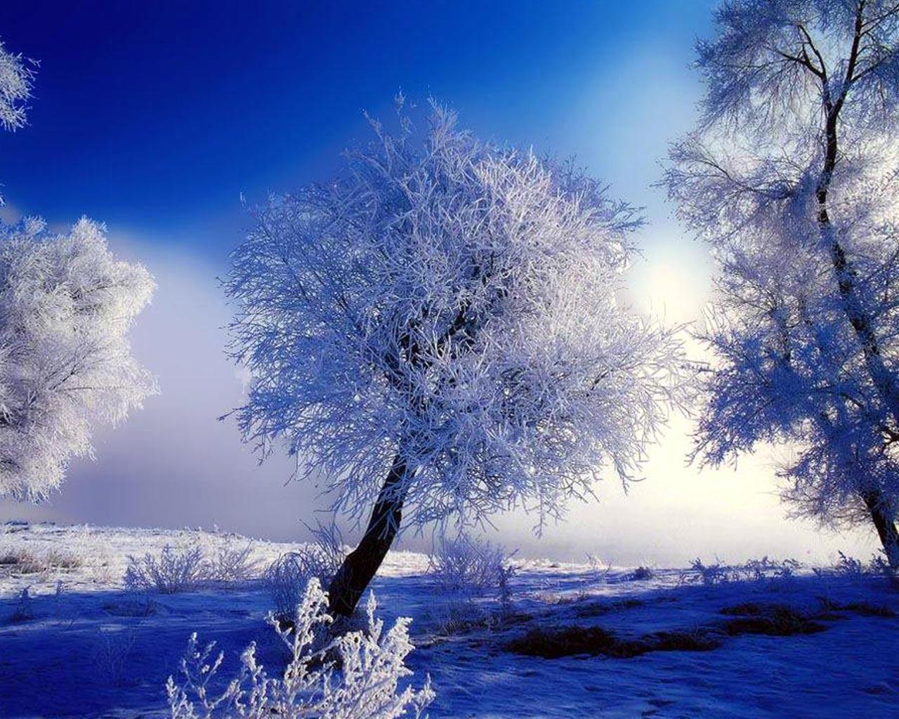 Tapeta na plochu v rozlišení 1280x1024 krásná zimní scenérie