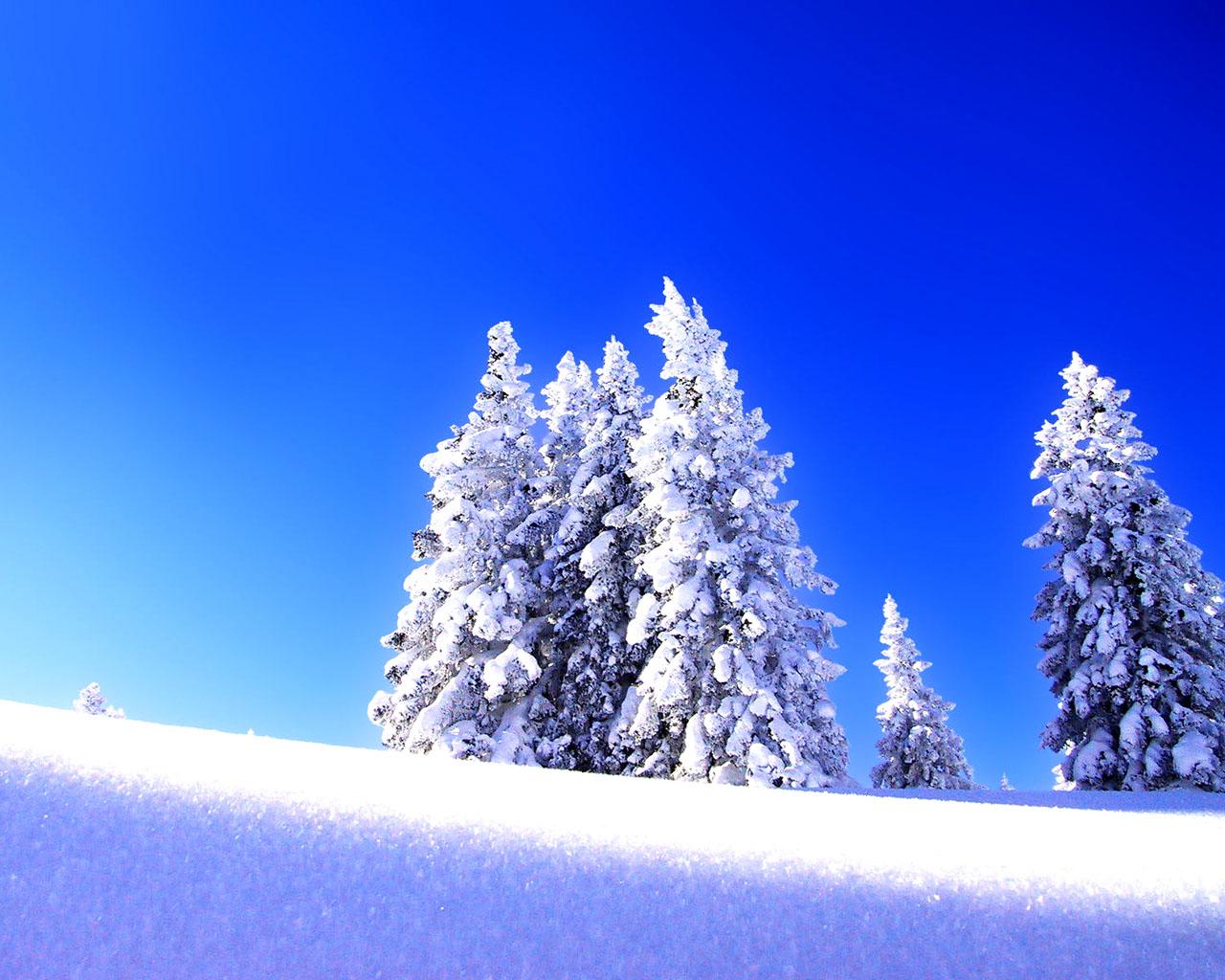 Obrázek na plochu v rozlišení 1280 x 1024 zimní krajina