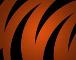 Obrázek - Tygří pozadí pro PC