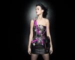 Obrázek - Zpěvačka Katy Perry na Vašem monitoru