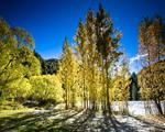 Obrázek - Dech beroucí podzim na Novém Zélandu