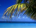 Obrázek - Nejklidnější pláž na světě