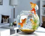 Obrázek - Krmení rybiček