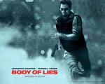 Obrázek - Leonardo DiCaprio jako tajný agent CIA