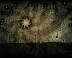 Obrázek - Osamocené kolo