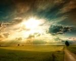 Slunečná pole