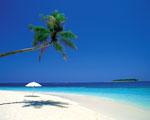 Obrázek - Rodinná dovolená v ráji Karibiku