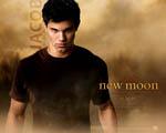 Obrázek - Taylor Lautner jako Jacob Black vlkodlak