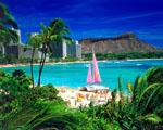 Obrázek - Překrásná dovolená na Waikiki