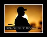 Obrázek - Eldrick Tiger Woods nejlepší golfista světa