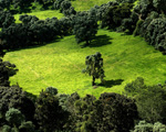 Obrázek - Vnitřní oblast Kostariky