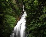 Obrázek - Vodopád v hlubokém lese