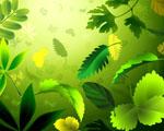 Obrázek - Kombinace zelených listů