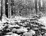 Obrázek - Zasněžený horský potok