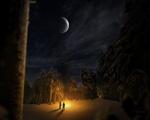 Obrázek - Kempování v lese