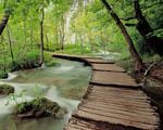 Obrázek - Národní park Plitvice v Chorvatsku