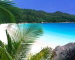 Obrázek - Tropická dovolená s rodinou