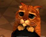 Obrázek - Shrek 3 a kočičí oči v podání Kocoura v botách