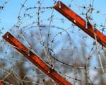 Obrázek - Ostnatý drát na plotě