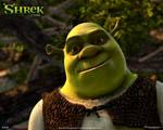 Obrázek - Pohádková postava Shrek v detailu