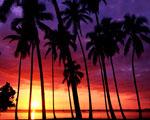 Obrázek - Nepopsatelný západ slunce
