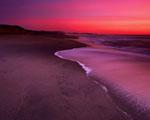 Obrázek - Last minute dovolená mezi dunami