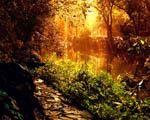 Obrázek - Pohádková zahrada