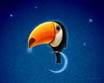 Obrázek - Tukan na měsíci má rád hvězdy