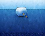 Obrázek - Podmořské akvárium