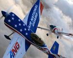 Obrázek - Národní letecká hlídka