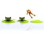 Obrázek - Skákající žaba