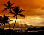 Obrázek - Západ slunce v ráji
