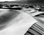 Obrázek - Černobílá poušť