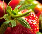 Obrázek - Zralé sladké jahody