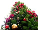 Obrázek - Ozdobený vánoční stromek
