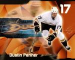 Obrázek - Dustin Penner a Anaheim Ducks