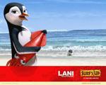 Obrázek - Lani plavčík ve filmu Divoké vlny