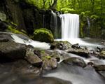 Obrázek - Tajný vodopád uprostřed lesa