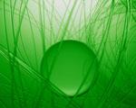 Obrázek - Zelená vášeň