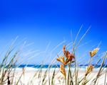 Obrázek - Nádherně čistá pláž
