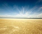 Obrázek - Vítejte na úžasné pláži