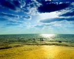 Obrázek - Rybaření na okraji moře
