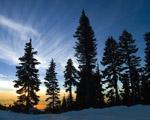 Obrázek - Západ slunce za lesem