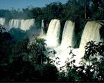 Obrázek - Vodopády v džungli