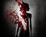 Obrázek - Příběh jedné ženy
