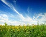 Obrázek - Pomalované nebe