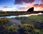 Obrázek - Západ slunce na ostrově Whatipu