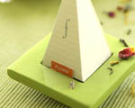 Obrázek - Tea forte v detailu