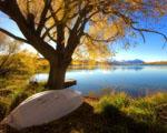 Obrázek - Jezero Alexandrina na Novém Zélandu
