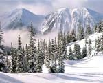 Obrázek - Krutá zima na horách